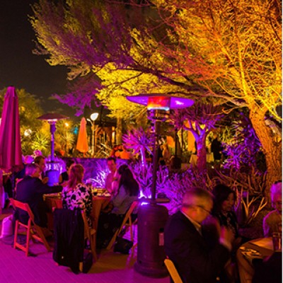 Desert Botanical Garden Welcomes 625 Guests to 30th Annual Dinner on the Desert