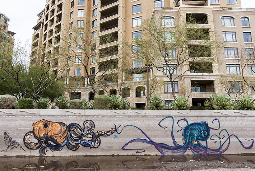 Canal Creatures by Isaac Caruso and Ashley Macias_feat